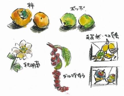 柿やポッポのイラスト