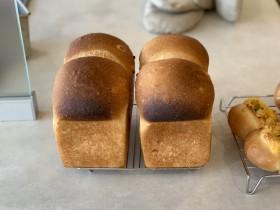 パン教室で作ったハードパン