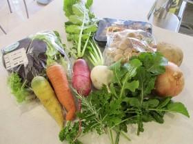 使用した野菜たち