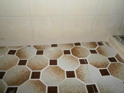 浴室床 5