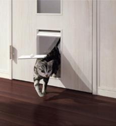 遊び心いっぱいのキュートな壁内くぐり戸