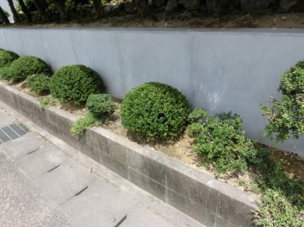 化粧コンクリート色合わせ復元工法施工後