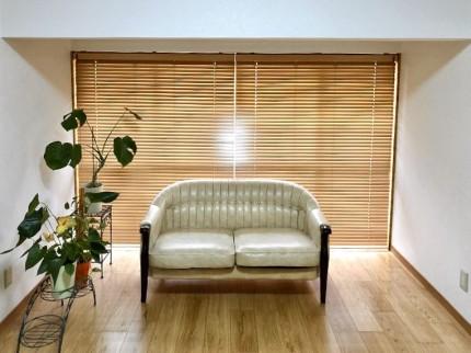 ベッドが入る前のソファーと観葉植物