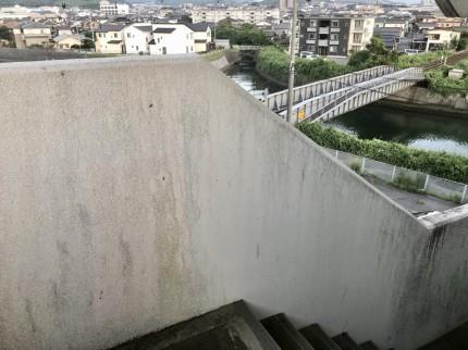 4階の階段付近