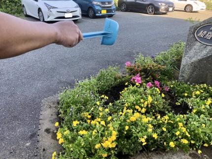 ⑥花壇へ水やり