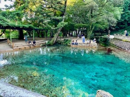 透き通った綺麗な池